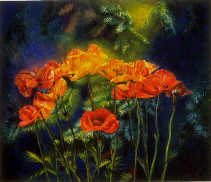 Poppies and Pines